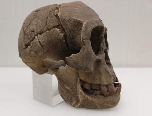 Un hobbit en Clínica de Ortodoncia Doctor Baca